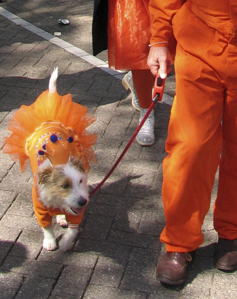 People celebrate Queen's Day in Amsterdam, Netherlands, Monday April 30, 2012, a Dutch national holiday marking the birthday of the Queen's mother. Orange is the theme in respect for the family name of the royal house. (AP Photo/Margriet Faber)