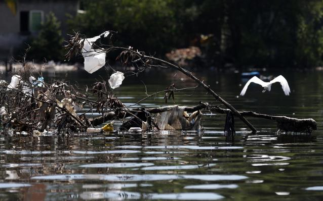 A bird flies next to garbage in the Guanabara Bay in Rio de Janeiro
