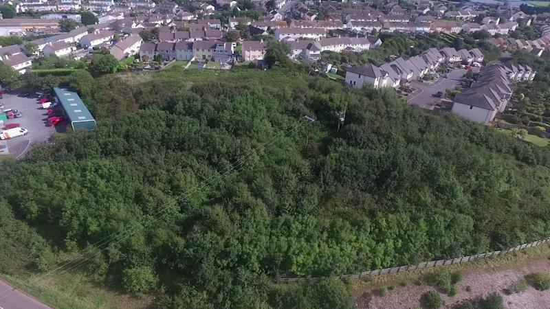 The woodland area at the end of Seymour Drive in Dartmouth, Devon, before it was cleared (Picture: Andrew Love/SWNS)