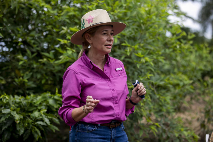 Iris Janette Rodríguez, coffee producer from the town of Adjuntas (Camille Padilla / ConPRmetidos)