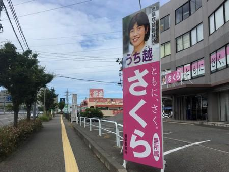 Sakura Uchikoshi, an opposition candidate for Japan's  upcoming July  21 upper house election, poses in front of election posters in Mitsuke