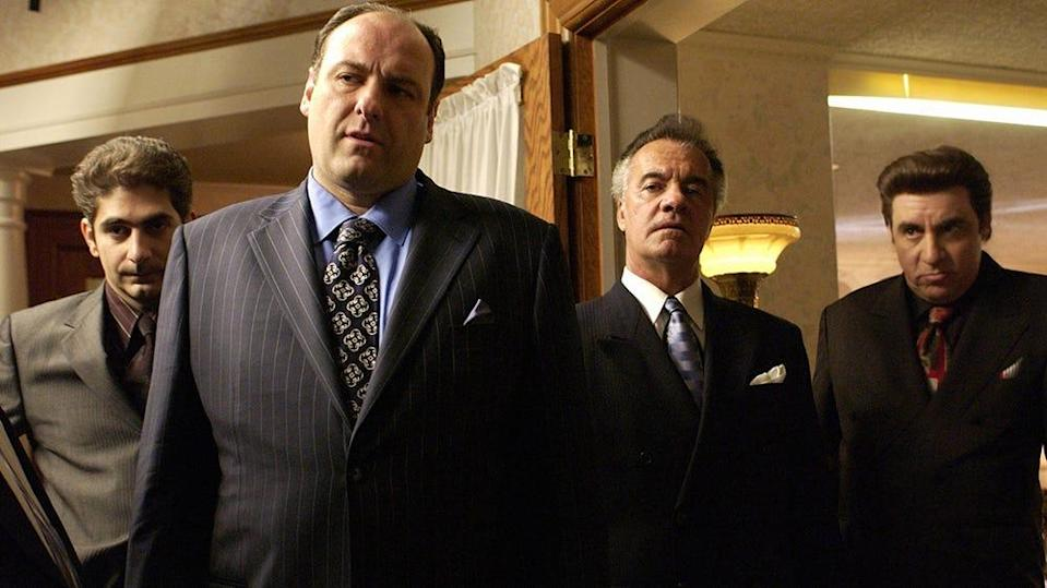 """""""The Sopranos"""" is considered one of the best TV shows ever created."""