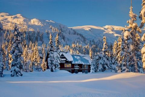 A lodge near Whistler - Credit: getty