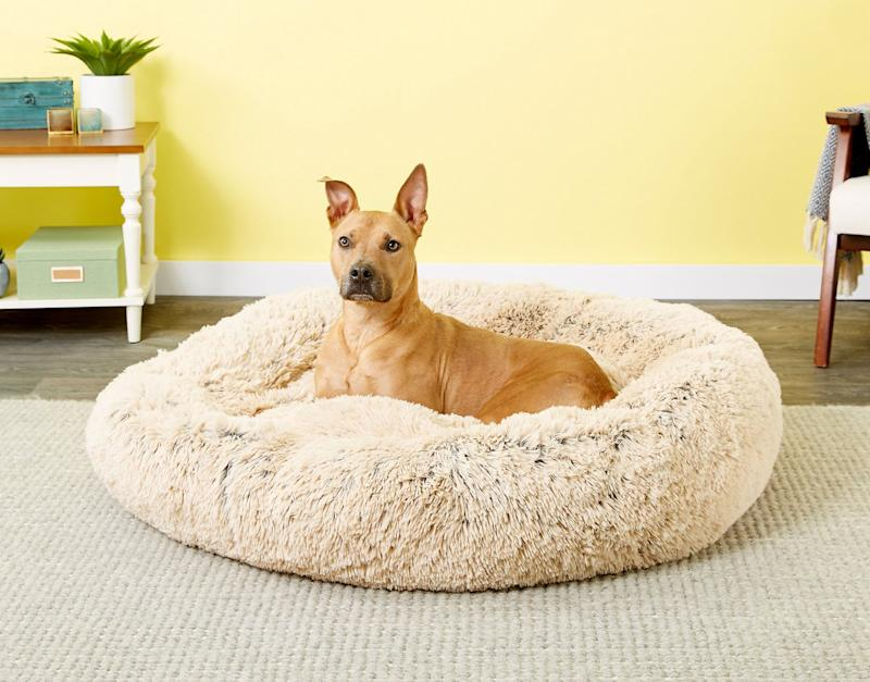 It's designed for smaller dogs and cats, but the XXL size is suitable for our larger furry friends, too. (Photo: Chewy)