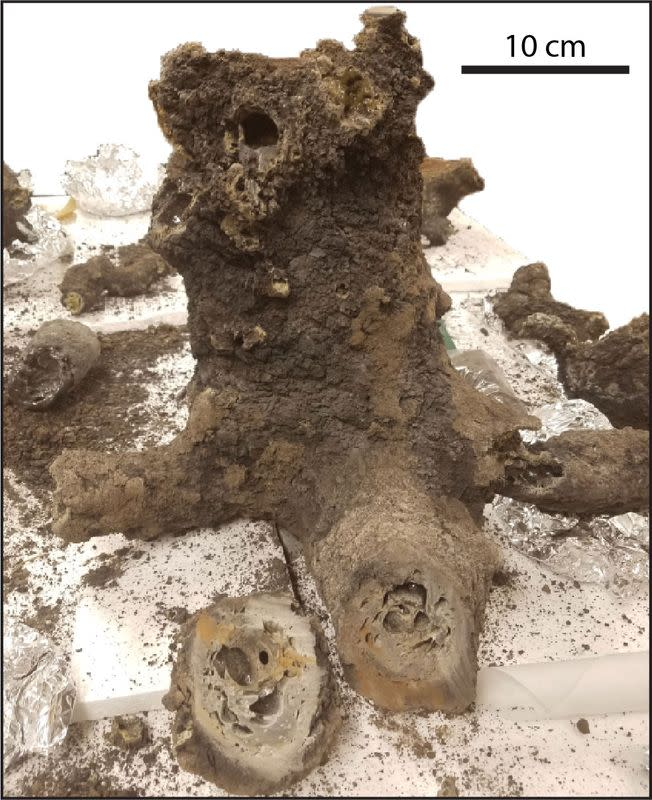 All excavated pieces of the fulgurite from the backyard of a family's home in Illinois analyzed in a study are seen in this undated handout image