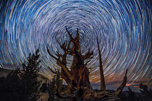 <p>Going forward, the pair plan to release various time-lapse videos from the project over the next year, helping to continue raising awareness for the International Dark Sky Association. (SKYGLOW/CATERS NEWS) </p>