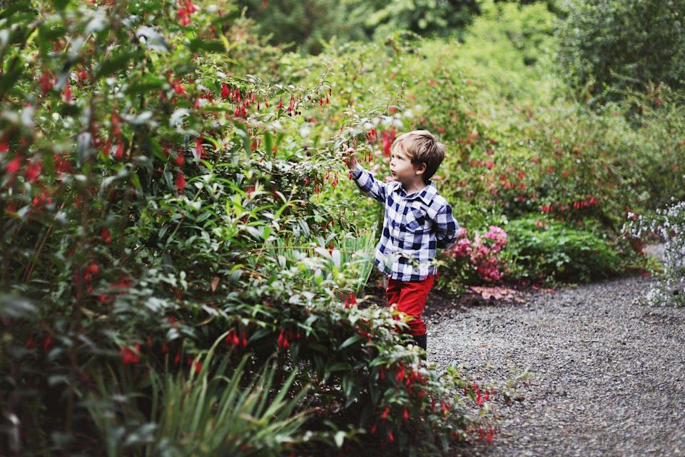 <p>How many times have you said you should go to the botanical garden? So many times. Just get over there already. You might just be surprised how much better you feel after spending the day surrounded by natural beauty. </p>