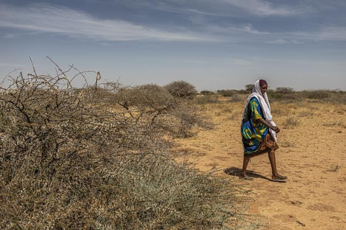 "Faisa Abdi Alleh walks to her farm in Beer, Somalia, which was devastated by locusts. <span class=""copyright"">(Will Swanson / For The Times)</span>"