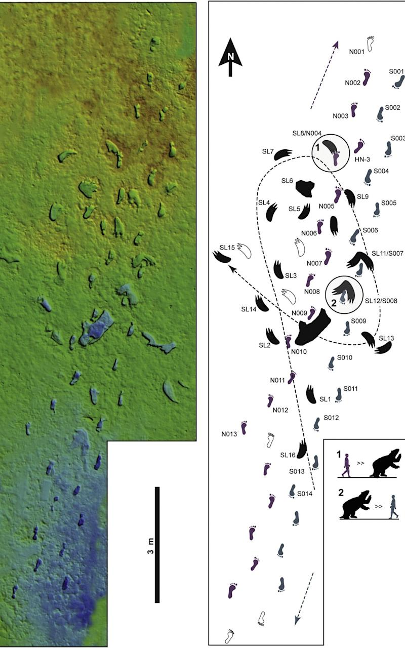 The path was discovered just a few centimetres under the surface of a dry lake bed - SWNS