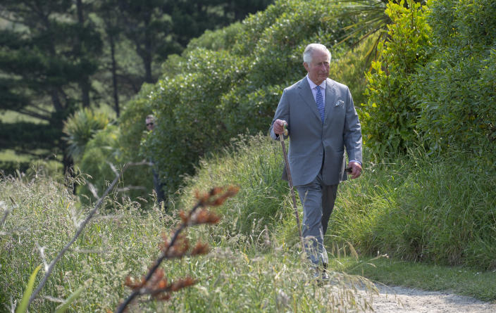 KAIKOURA, NEW ZEALAND - NOVEMBER 23: Prince Charles, Prince of Wales takes part in a coastal walk in Kaikoura with key figures working to protect the local environment on November 23, 2019 in Kaikoura, New Zealand. The Prince of Wales and Duchess of Cornwall are on an 8-day tour of New Zealand. It is their third joint visit to New Zealand and first in four years. (Photo by Arthur Edwards- Pool/Getty Images)