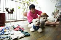 The dogs have almost 24,000 Instagram followers (AFP/Catherine LAI)
