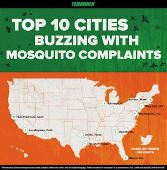 Cities Stinging From Mosquitoes Take to Twitter