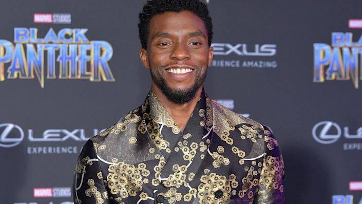 "HOLLYWOOD, CA – JANUARY 29: Actor Chadwick Boseman attends the premiere of Disney and Marvel's ""Black Panther"" at Dolby Theatre on January 29, 2018 in Hollywood, California. (Photo by Neilson Barnard/Getty Images)"