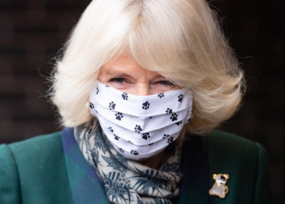 WINDSOR, ENGLAND - DECEMBER 09: Camilla, Duchess of Cornwall visits Battersea Dogs Home in Windsor on December 09, 2020 in Windsor, United Kingdom. (Photo by Samir Hussein/WireImage)