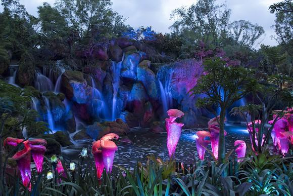 Luminescent flowers from the Pandora -- The World of Avatar attraction at Disney World.