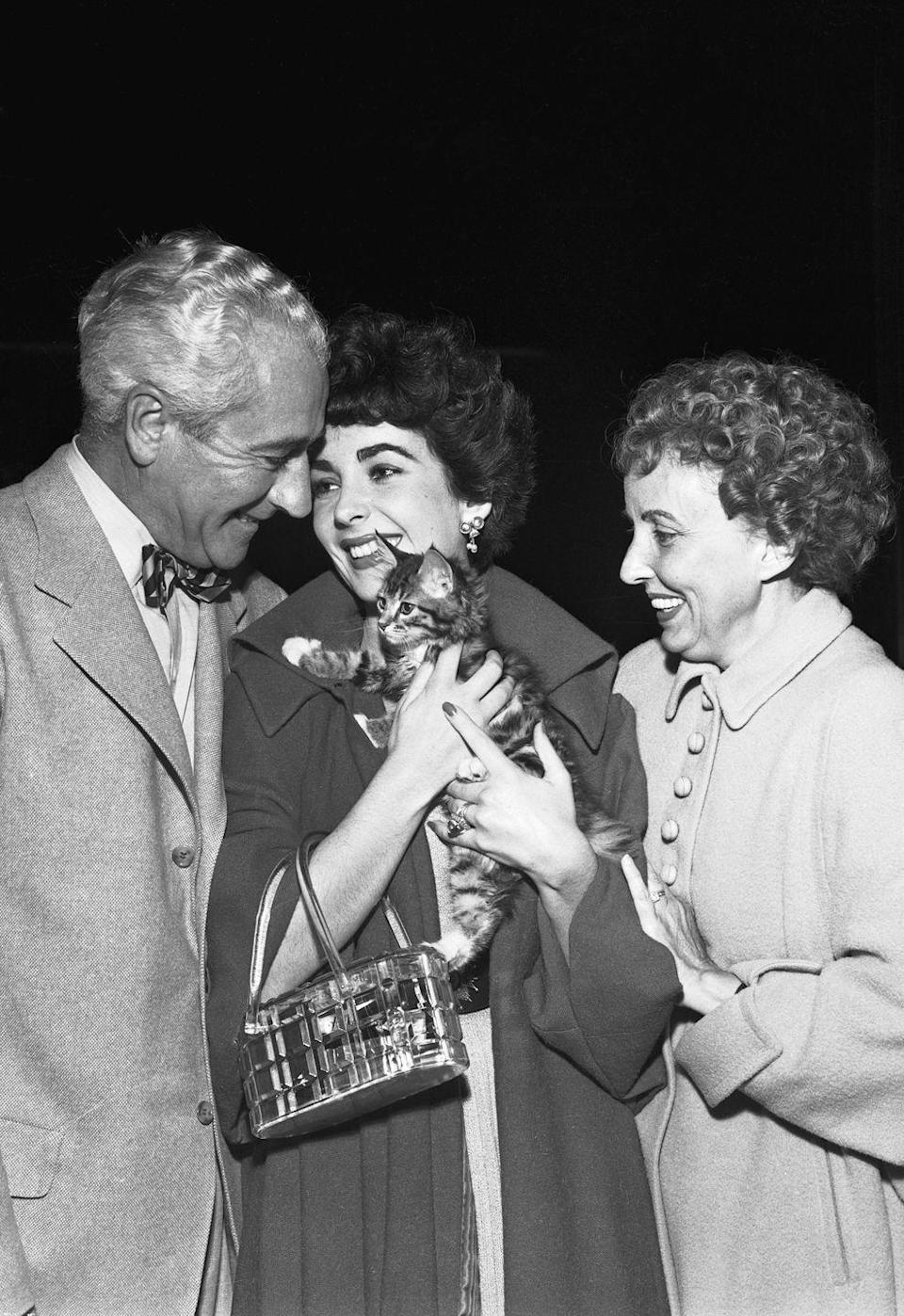"""<p>Upon returning home from her six-month stay in London, Elizabeth Taylor met her parents at the airport to reveal her new tiny kitten, Tailspin. However, the actress's new pet wasn't the only new addition to her household: Elizabeth <a href=""""https://economictimes.indiatimes.com/magazines/panache/the-many-marriages-of-elizabeth-taylor-everything-you-wanted-to-know-about-her-seven-husbands/variety-is-the-spouse-of-life/slideshow/60070468.cms"""" rel=""""nofollow noopener"""" target=""""_blank"""" data-ylk=""""slk:married her second husband"""" class=""""link rapid-noclick-resp"""">married her second husband</a>, Michael Wilding, in London in February, 1952. </p>"""