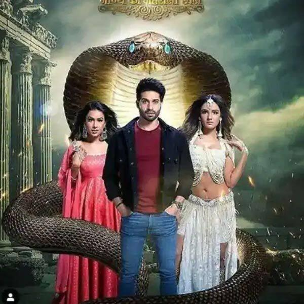 Image result for naagin 4