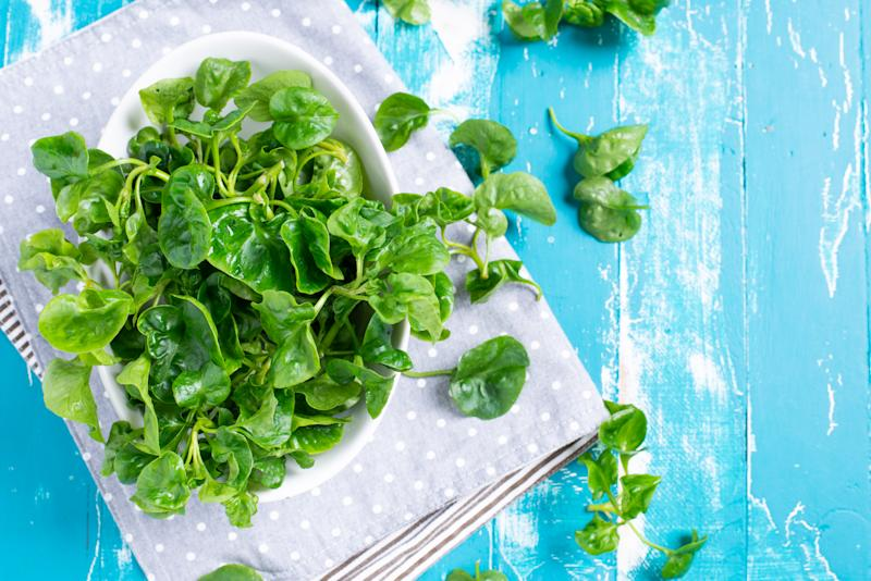 Fresh Watercress on blue green table background