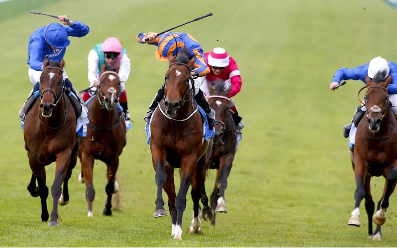 Churchill (centre) has long been favourite for the 2,000 Guineas and Derby - Rex Features