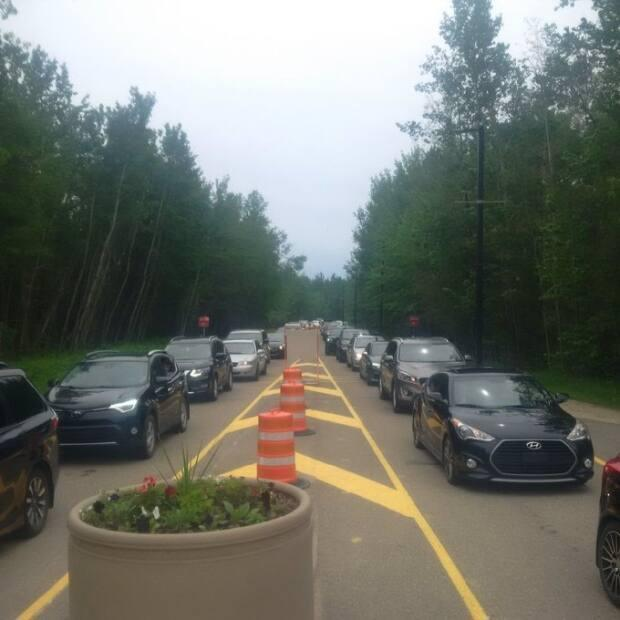 Vehicles line up to get into Elk Island National Park. An influx of regular vistors has park officials asking people to avoid the park on weekends until further notice.  (Submitted by Dale Kirkland - image credit)