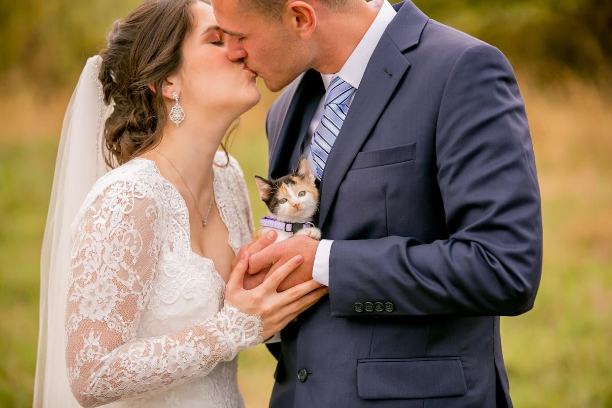 """Chloe the calico was the best wedding surprise.&nbsp; (Photo: <a href=""""https://www.facebook.com/wildnwonderfulphotography/"""" rel=""""nofollow noopener"""" target=""""_blank"""" data-ylk=""""slk:Wild and Wonderful Photography"""" class=""""link rapid-noclick-resp"""">Wild and Wonderful Photography</a>)"""