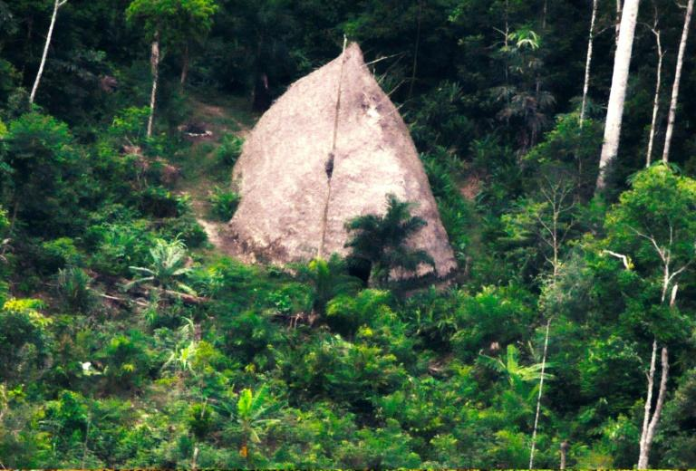 This handout drone picture taken in 2017 and released by Brazil's National Indian Foundation (FUNAI) on August 23, 2018 shows a thatched hut in the indigenous territory Vale do Javari in the Brazilian Amazon forest in Amazonas state