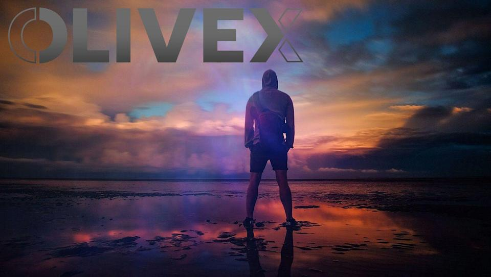OliveX Holdings Limited