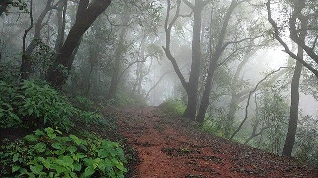 Located in the Raigad district in the Western Ghats, is Asia's only automobile free hill station. It's proximity to Mumbai also makes Matheran a popular getaway for urban dwellers hoping to escape the city's polluted environs. Matheran's economy largely revolves around tourism. The roads are not metalled and pathways are made of red laterite mud. Cars and other automobiles are only allowed up to a point, post which travellers to Matheran have the option of either walking around or taking one of the many horses that are available for rent.  <em><strong>Image credit:</strong></em> By Ccmarathe at English Wikipedia, CC BY-SA 4.0, https://commons.wikimedia.org/w/index.php?curid=61386794