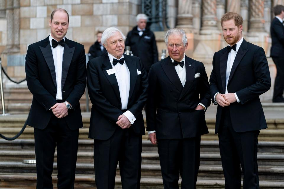 "(L-R) Britain's Prince William, Duke of Cambridge, British naturalist, documentary maker and broadcaster David Attenborough, Britain's Prince Charles, Prince of Wales and Britain's Prince Harry, Duke of Sussex, pose upon arrival for the Global Premiere of ""Our Planet"" in London on April 4, 2019. (Photo by Niklas HALLE'N / AFP)        (Photo credit should read NIKLAS HALLE'N/AFP via Getty Images)"
