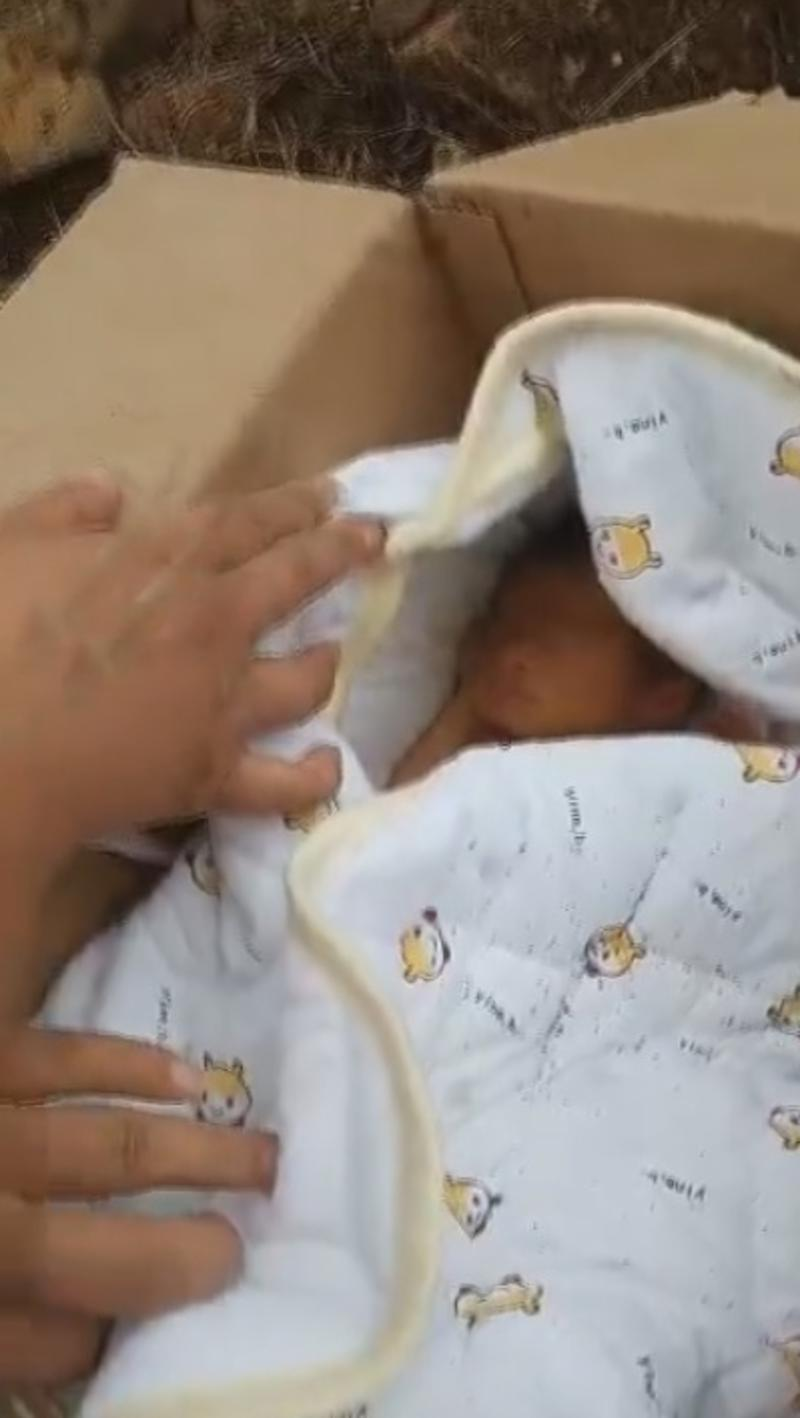 Pictures is the newborn wrapped in a blanket in the cardboard box it was buried in. Source: AsiaWire/Australscope.