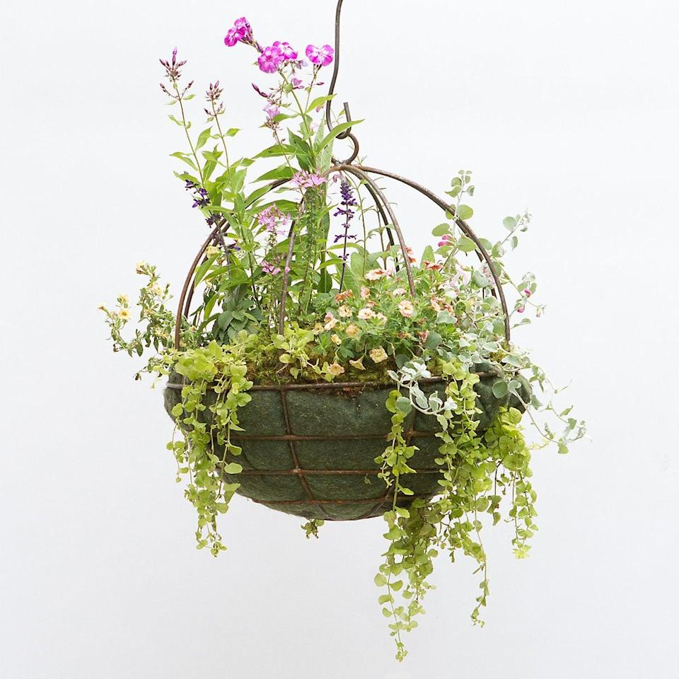 """<h2>Terrain Sphere Hanging Basket</h2> <br>This hanging plant sphere crafted from hand-forged steel will make an understated statement inside minimalist-chic or industrial-style spaces. <br><br><strong>Terrain</strong> Sphere Hanging Basket, $, available at <a href=""""https://www.shopterrain.com/products/sphere-hanging-basket"""" rel=""""nofollow noopener"""" target=""""_blank"""" data-ylk=""""slk:Terrain"""" class=""""link rapid-noclick-resp"""">Terrain</a><br>"""