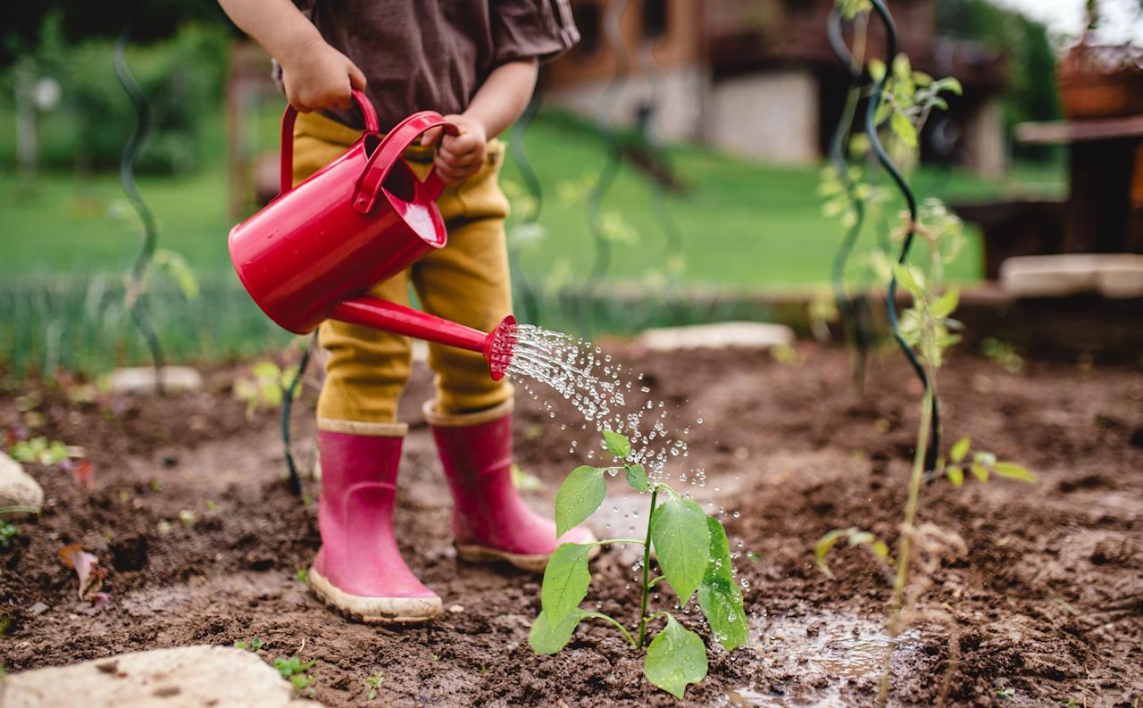 """<p>Planting our own food or herbs is an easy way to save money, eat fresh food, have ingredients available more readily, and <a href=""""https://www.popsugar.com/family/best-sustainable-products-2020-45965662"""" class=""""ga-track"""" data-ga-category=""""Related"""" data-ga-label=""""https://www.popsugar.com/family/best-sustainable-products-2020-45965662"""" data-ga-action=""""In-Line Links"""">reduce our carbon footprint</a> even more. Gardening is a fun activity that my toddler loves helping out with and it's encouraged all of us to eat healthier, too.</p>"""