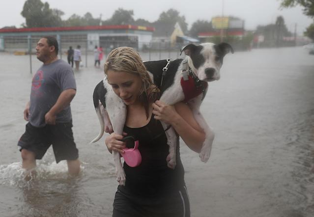 <p>Naomi Coto carries Simba on her shoulders as they evacuate their home after the area was inundated with flooding from Hurricane Harvey on Aug. 27, 2017 in Houston, Texas. (Photo: Joe Raedle/Getty Images) </p>