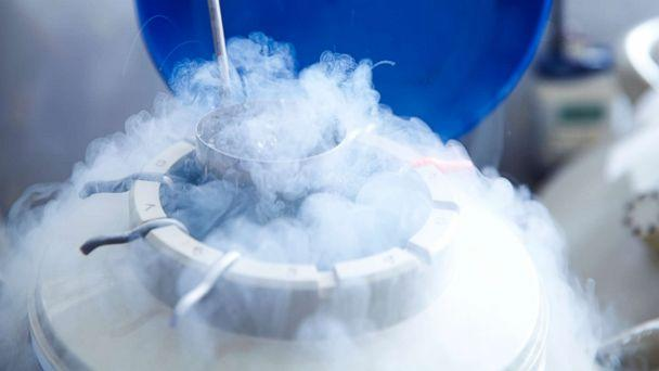 PHOTO: An undated stock photo of egg storage for in vitro fertilisation (IVF) in cryogenic (frozen) storage. (Getty Images/Science Photo Library RF)
