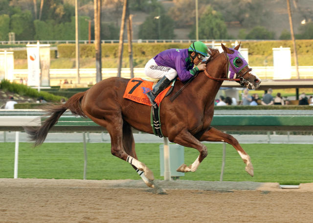 In a photo provided by Benoit Photo, California Chrome and jockey Victor Espinoza win the $250,000 California Cup Derby horse race, Saturday, Jan. 25, 2014, at Santa Anita in Arcadia, Calif