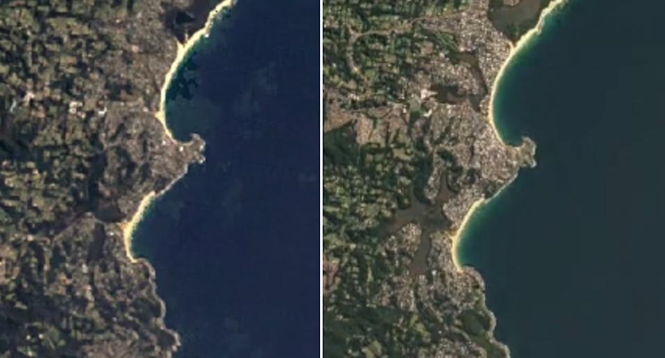 Google Earth Timelapse shows the coast in Wamberal in 1984 (left) compared to 2020 (right). Source: Google Earth