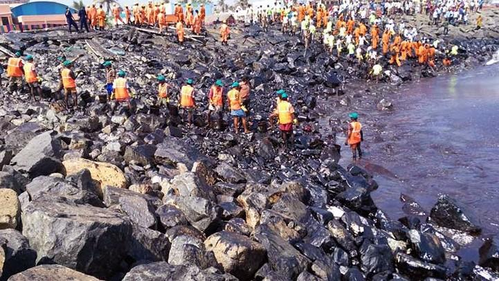 TN Govt In Denial About Oil Spill Effects Despite IIT-M Warning