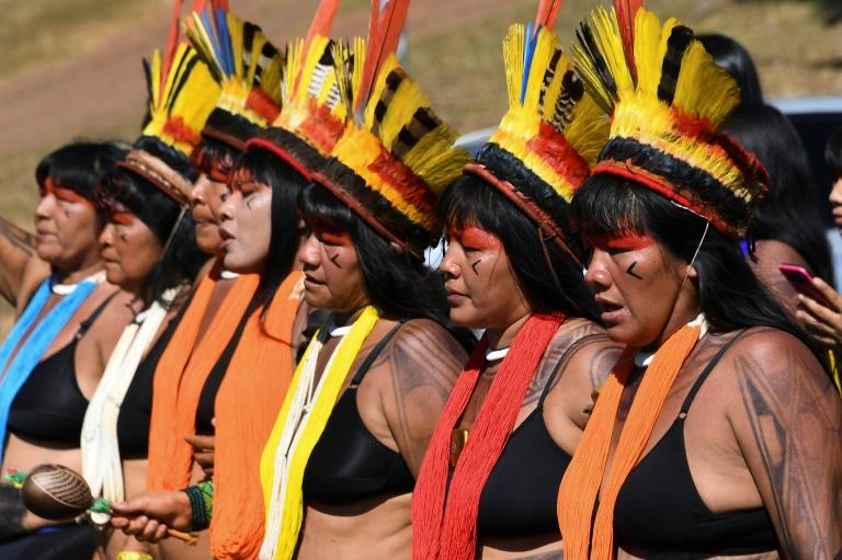 Brazilian indigenous women march in Brasilia to demand that the government protect the Amazon rainforest