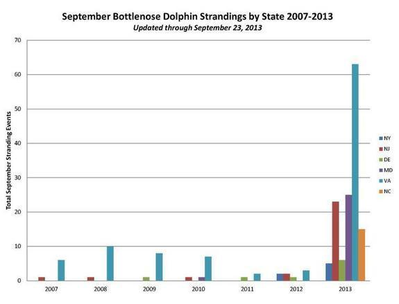 """Figure from NOAA Fisheries' landing page regarding """"2013 Bottlenose Dolphin Unusual Mortality Event in the Mid-Atlantic."""""""