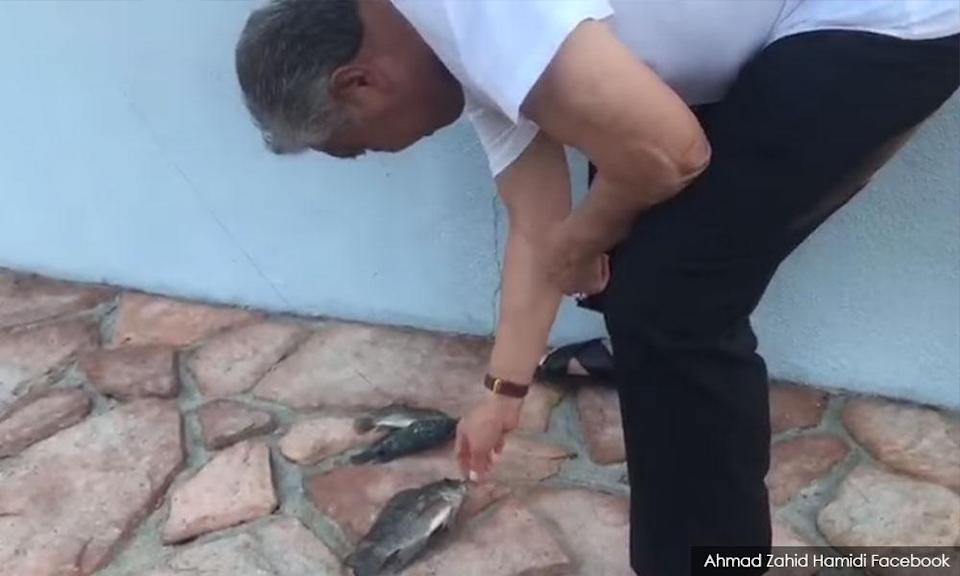 Umno president Ahmad Zahid Hamidi inspecting his catch when he went fishing.