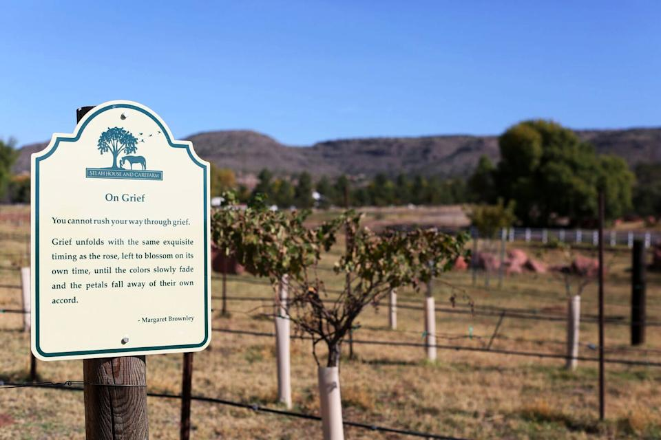 One of the many signs dotting the land of the care farm. (Photo: Caitlin O'Hara for Yahoo Lifestyle)