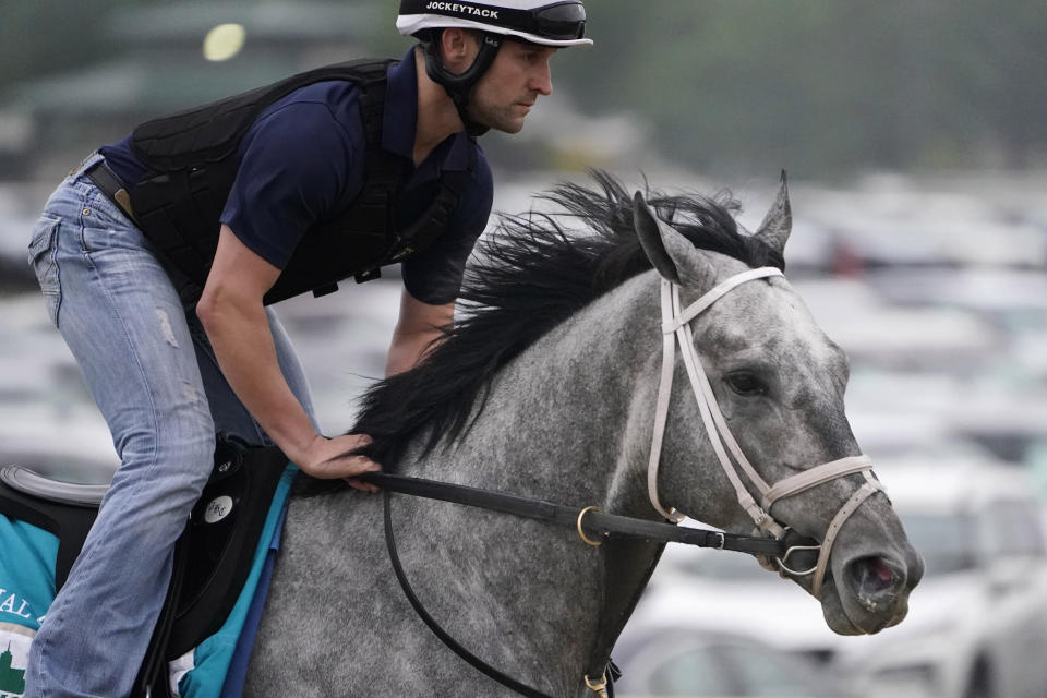 Essential Quality trains the day before the 153rd running of the Belmont Stakes horse race in Elmont, N.Y., Friday, June 4, 2021. (AP Photo/Seth Wenig)
