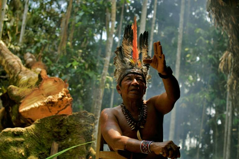 """President-elect Jair Bolsonaro has said he will not give up """"one centimetre more"""" land to indigenous communities in Brazil"""