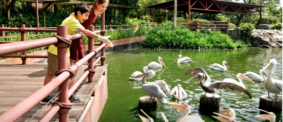 PHOTO: Klook. Singapore Zoo, Night Safari, River Safari, Jurong Bird Park Multi-Park Bundles