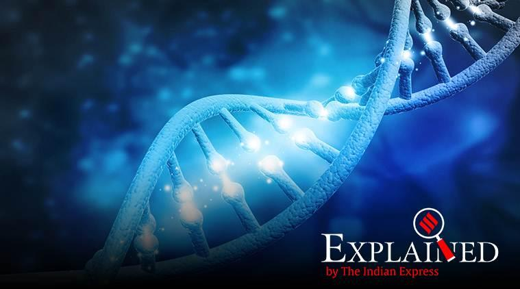 Genome India Project, gene-mapping project, gene-mapping, gene-mapping in India, gene-mapping project in India, India news, Indian Express