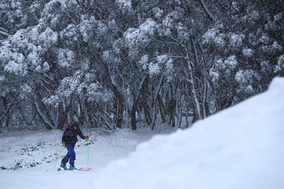 cross country skier in the snow