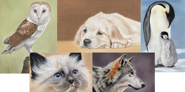 You'll learn to draw animals with pastel pencils (Photo: Yahoo Lifestyle Shop)