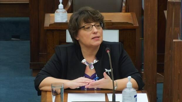 P.E.I. Privacy Commissioner Denise Doiron addresses a government standing committee on health and social development Wednesday.