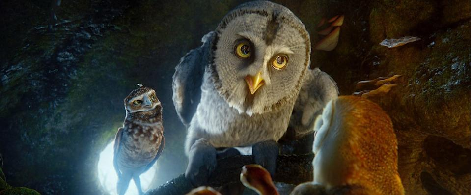 """<p><strong>Hulu's Description:</strong> """"A courageous owl launches a quest to locate the legendary defenders who can save the owl species in this animated adventure.""""</p> <p><span>Stream <strong>Legend of the Guardians The Owls of Ga'Hoole</strong> on Hulu!</span></p>"""