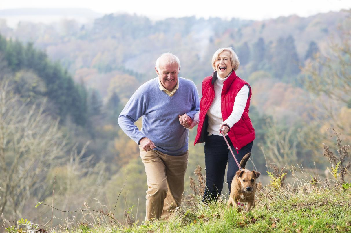 A few hours a week of light exercise -- walking the dog, puttering about in the garden -- lower the risk of death in older men.